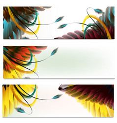 brochures set with feathers vector image