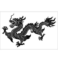 Chinese dragon crawling vector