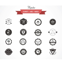 Hipster lables badges and elements vector image