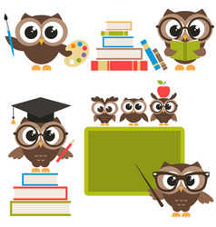 Owls in the school vector