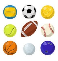 sport equipment different balls in cartoon style vector image