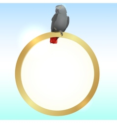 Parrot and golden frame vector image