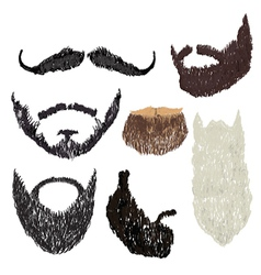 Beard with mustache vector image