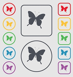butterfly icon sign symbol on the Round and square vector image