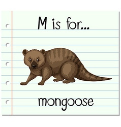 Flashcard letter M is for mongoose vector