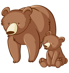 Mother and baby grizzly bear cartoon on white vector