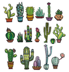 Set of colorful succulents and cactuses vector