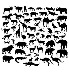 Wildlife Animal Silhouettes vector image