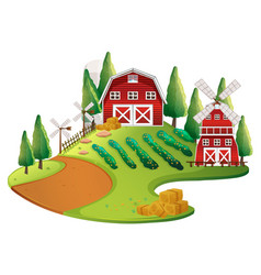 farm scene with crops and barn vector image