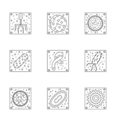 Microorganisms line icons collection vector image vector image