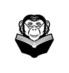 Chimpanzee chimp monkey primate or ape wearing vector
