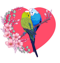 Couple lovely budgies kissing on a branch vector