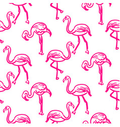 flamingo hot pink outline sketch seamless vector image
