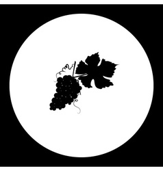black grapes and leaf isolated icon eps10 vector image vector image