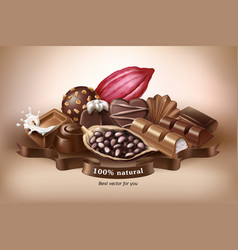 banner with chocolate sweets vector image