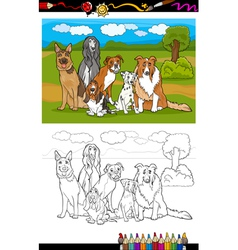 dogs breeds cartoon for coloring book vector image