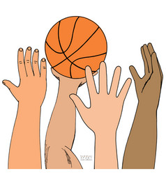 four male hands attack basket ball playing vector image
