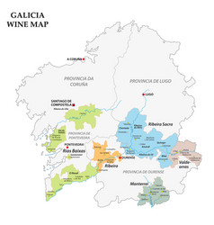 galicia spain map of the vineyards vector image