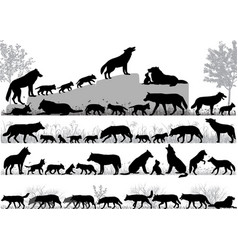 Pack of wolves vector