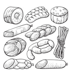 sausage and salami delicious meat sketch set vector image