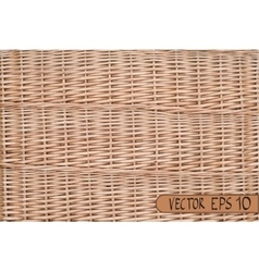 wicker real pattern vector image