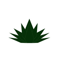 agave logo vector image