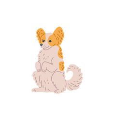 Cute dog small breed sits on hind legs cartoon vector