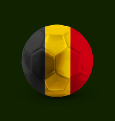 football soccer ball with the national flag vector image