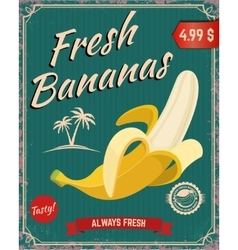 Fresh bananas Banana vector