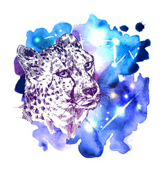 sketch cheetah vector image