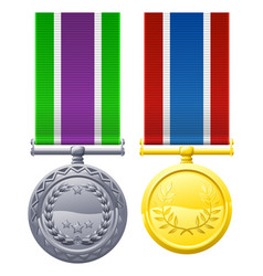 two metal chest medals and ribbons vector image