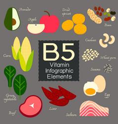 vitamin b5 infographic element vector image