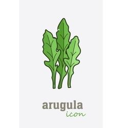 Arugula icon Vegetable green leaves vector image