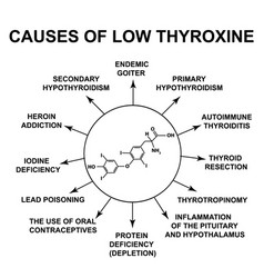 Causes low thyroxine thyroid hormone thyroxine vector