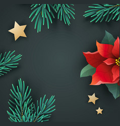 Christmas banner with poinsettia and fir branches vector