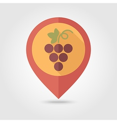 Grapes flat pin map icon Fruit vector image
