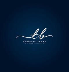 Initial letter tb logo handwritten signature logo vector