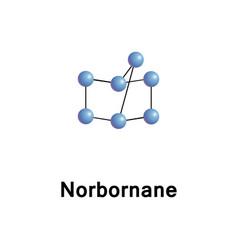 Norbornane bicycloheptane bicyclic hydrocarbon vector