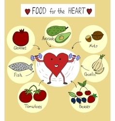 proper nutrition for a healthy heart vector image