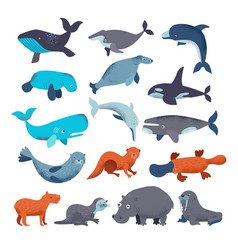 Sea mammal water animal character dolphin vector