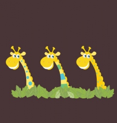 Three african safari giraffes vector