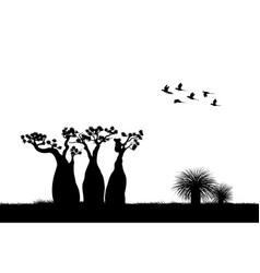 australian landscape black silhouette of koala vector image vector image