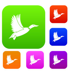 duck set collection vector image vector image