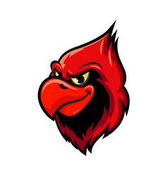 cardinal bird cartoon mascot design vector image