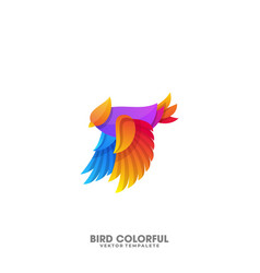 bird colorful template vector image