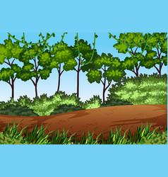 green forest nature landscape vector image