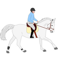 horse riding colored vector image