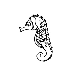 Sea horse animal vector image