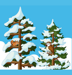 squirrel and owl on pine tree covered with snow vector image