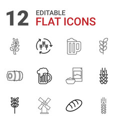 12 wheat icons vector